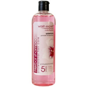 Wash Expert  Шампунь Color&Gloss 500мл